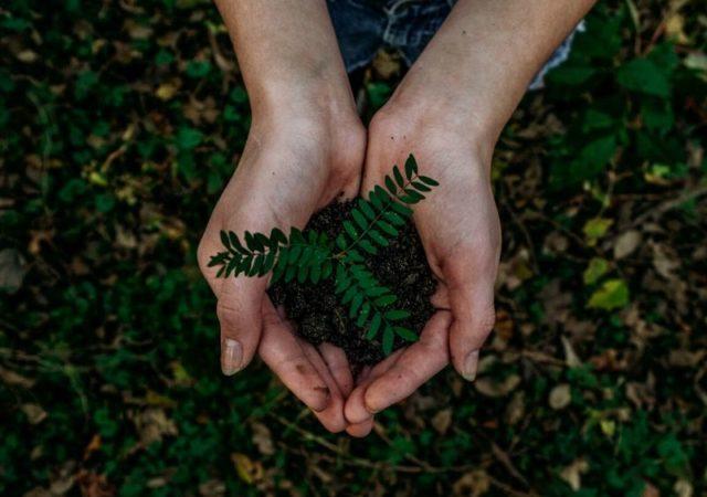 Ας σώσουμε τον κόσμο ξανά! Τα τελευταία χρόνια, πολλοί celebrities σε όλο τον κόσμο έχουν εκφράσει την ευαισθητοποίησή τους και τις ανησυχίες τους σχετικά με την προστασία του περιβάλλοντος και τη βιωσιμότητα του πλανήτη μας.