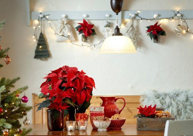 DIY Γιορτινές ιδέες κρεμαστής διακόσμησης με Αλεξανδρινό - Στεφάνια, συνθέσεις που κρέμονται από την οροφή ή την πόρτα και τον τοίχο.