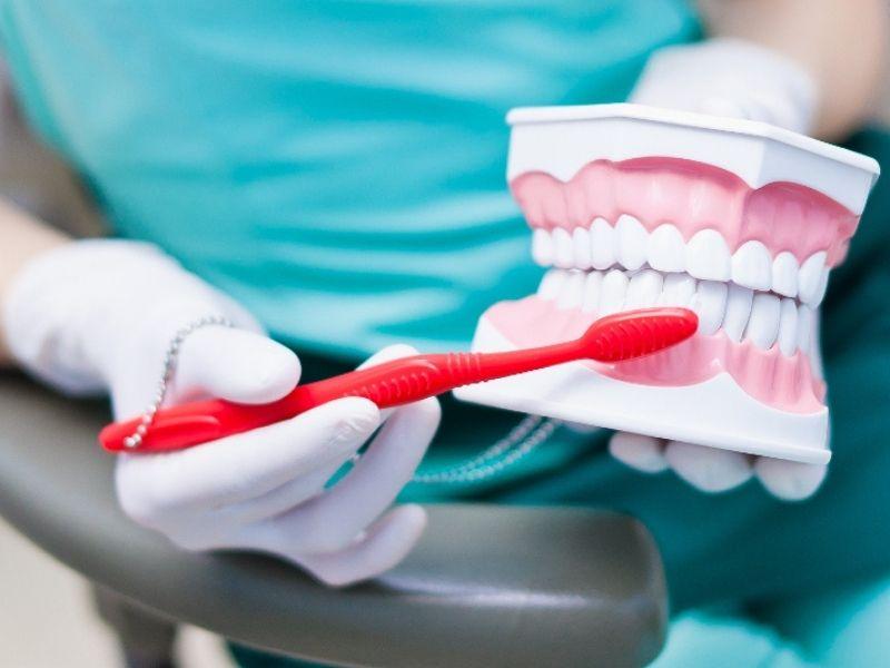 Πρόληψη και καθαρισμός για υγιή και γερά δόντια - είναι το σημαντικότερο βήμα για την φροντίδα της οδοντοστοιχίας για ενήλικες και παιδιά.