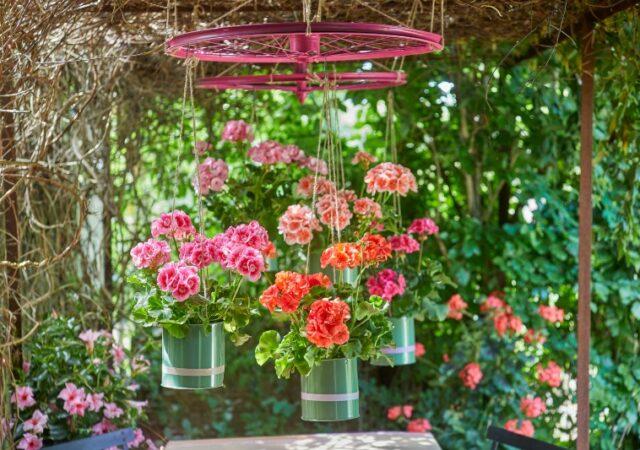 Ελάτε να ομορφύνουμε τον κήπο και το μπαλκόνι μας με αυτά τα εύκολα 3+1 Καλοκαιρινά DIY με γεράνια, δημιουργώντας μια μικρή όαση χαλάρωσης.