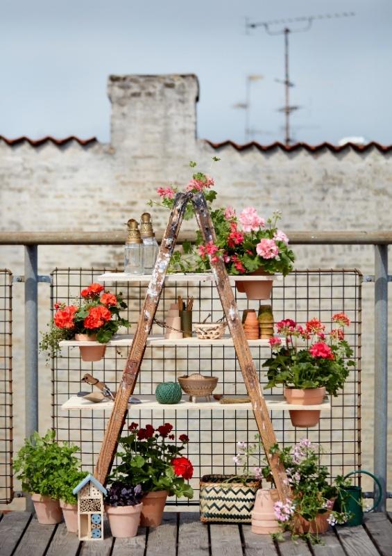 Μετατρέψτε το μπαλκόνι σας έναν μικρό παράδεισο στην πόλη με εντυπωσιακές DIY ιδέες με γεράνια για το μπαλκόνι.